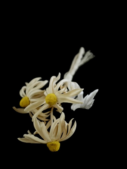 margaret bouquet - col. off white