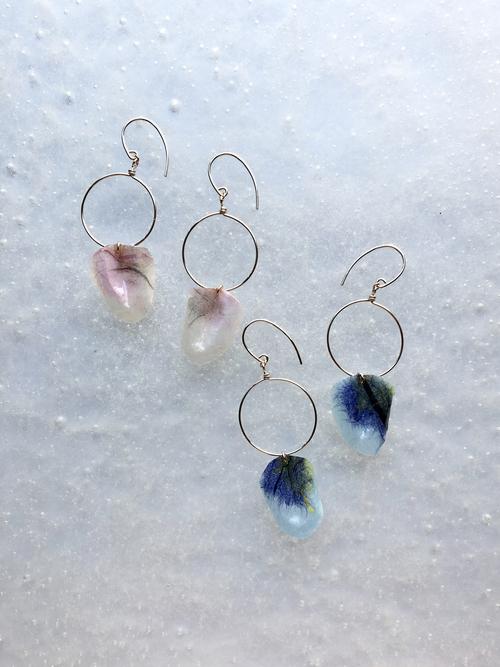 Petal pink blue