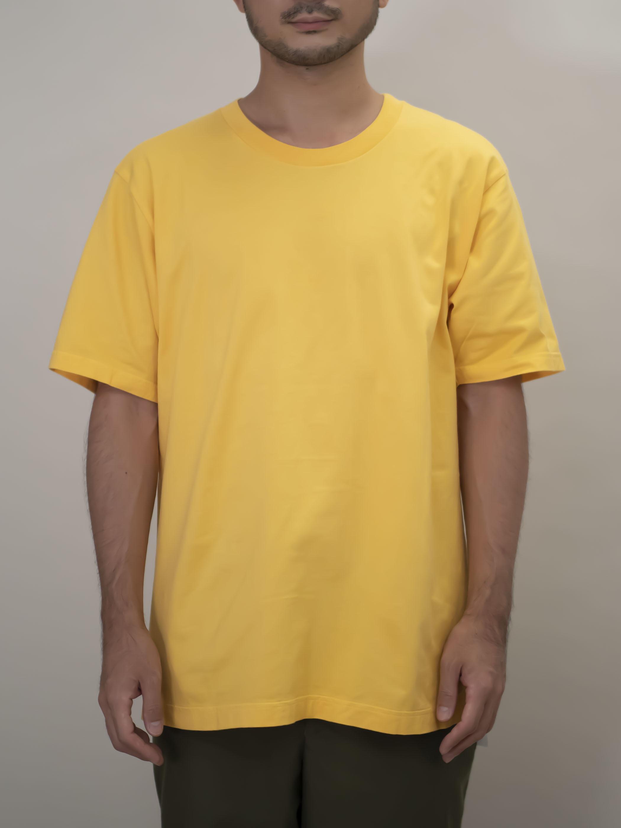 丸胴Tシャツ #10ジンジャー(ベージュ)
