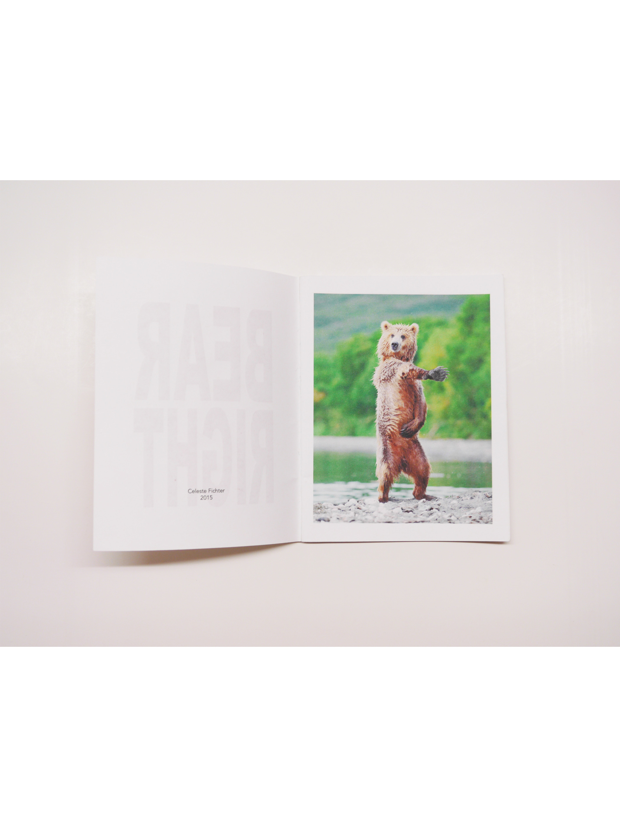 [ZINE] Bear Left