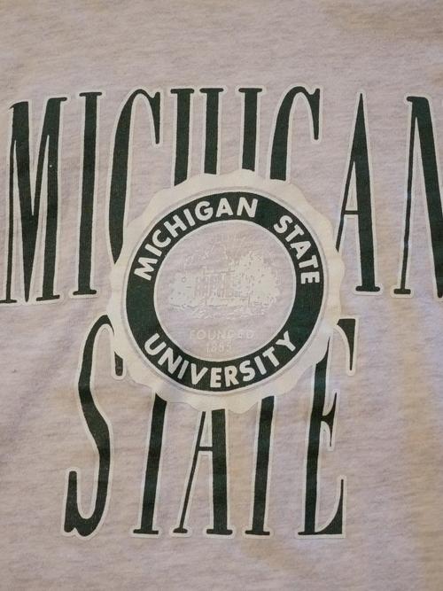 Champion 1980's LS T-Shirts SizeL