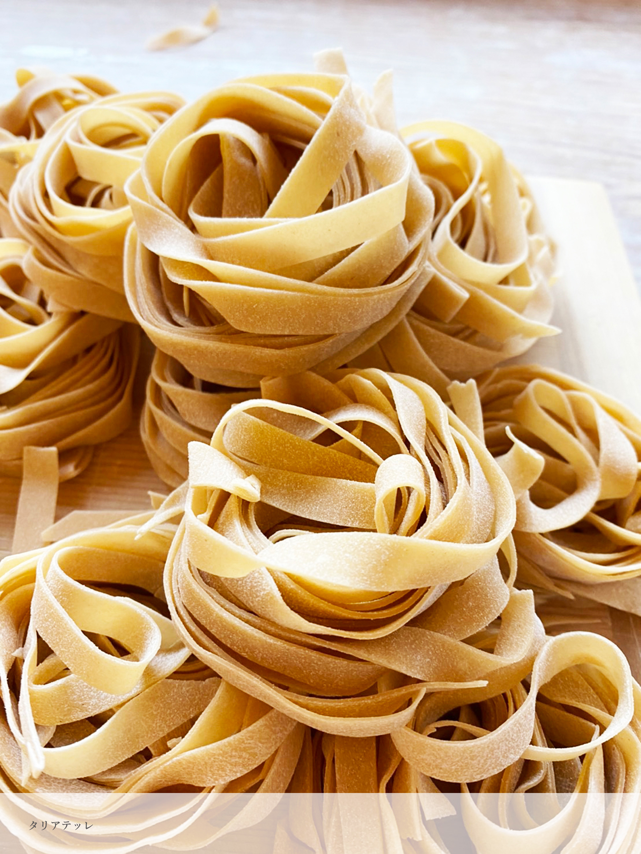 Pastificio SuginoセットC【パスタプレート/割草花 1枚×手のしパスタ 3種(各80g)】
