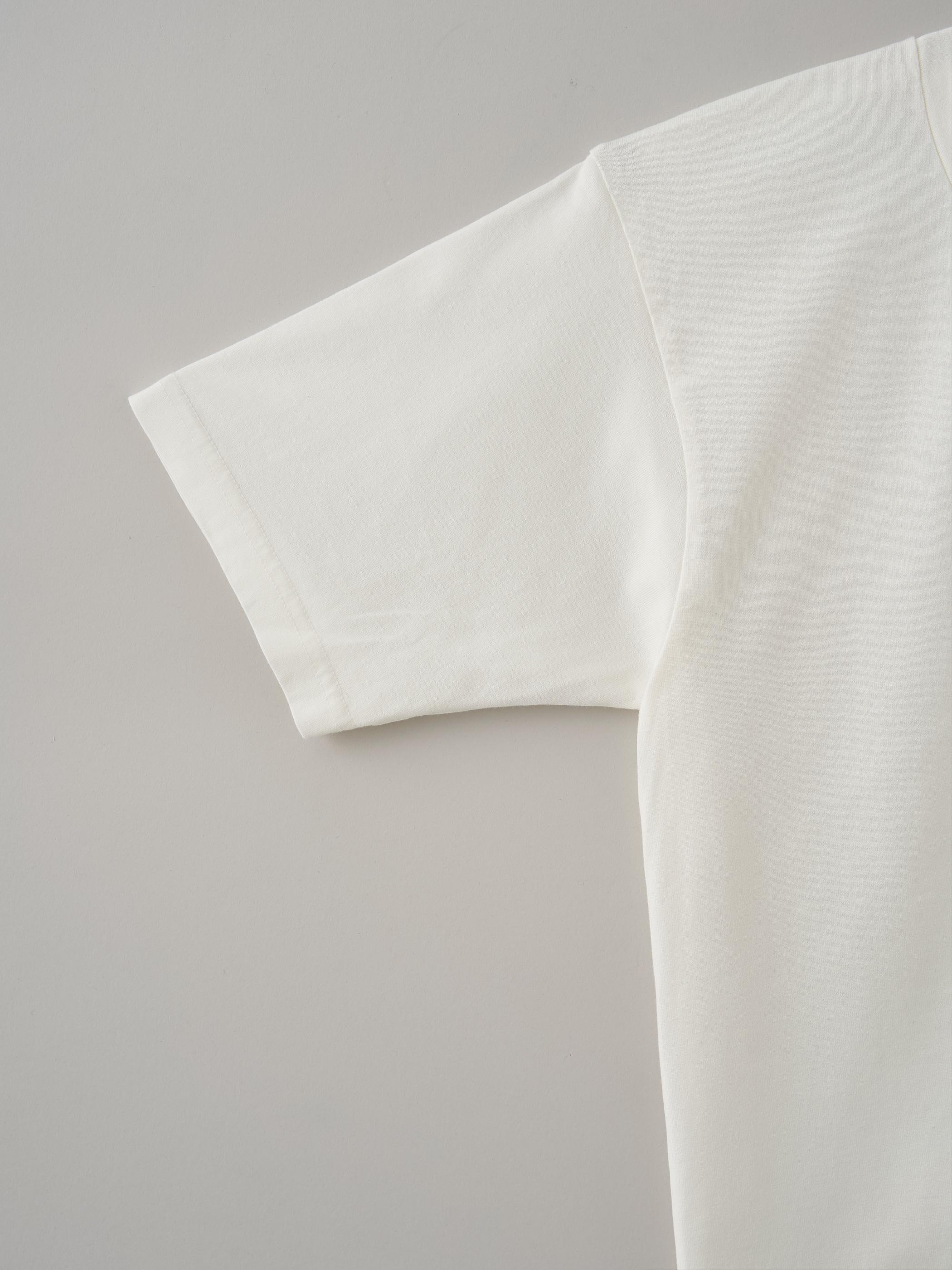 レディースVネックTシャツ #04ジンジャー
